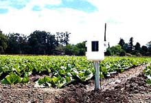 6345OV Wireless Leaf and Soil Moisture/Temperature Station