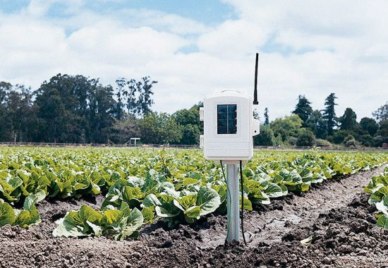 6345CSOV Complete Wireless Leaf and Soil Moisture/Temperature Station
